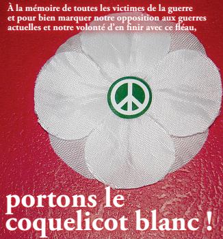 Coquelicot-blanc-2014-carré