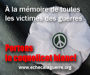 Communiqué du 2 novembre 2016: Le coquelicot blanc : à la mémoire de toutes les victimes des guerres